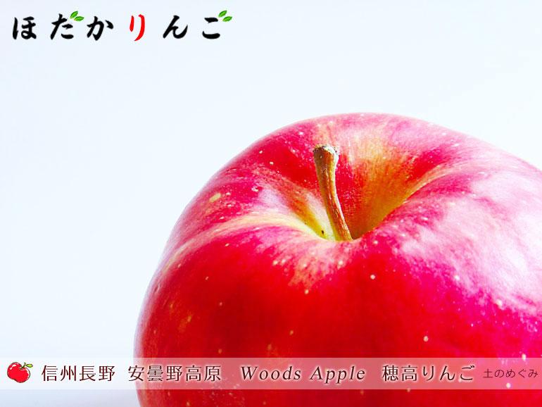 信州長野 安曇野高原 [Woods Apple]穂高りんご・シナノゴールド