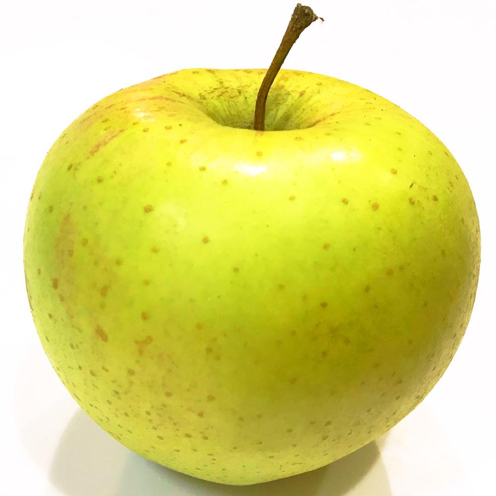 信州長野 安曇野高原 [Woods Apple]穂高りんご・ぐんま名月
