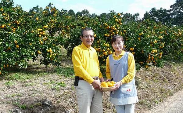 <span>マイヤー イエローレモン</span>吉田さんのみずみずしい「甘いレモン」は天にも昇る爽やかさ