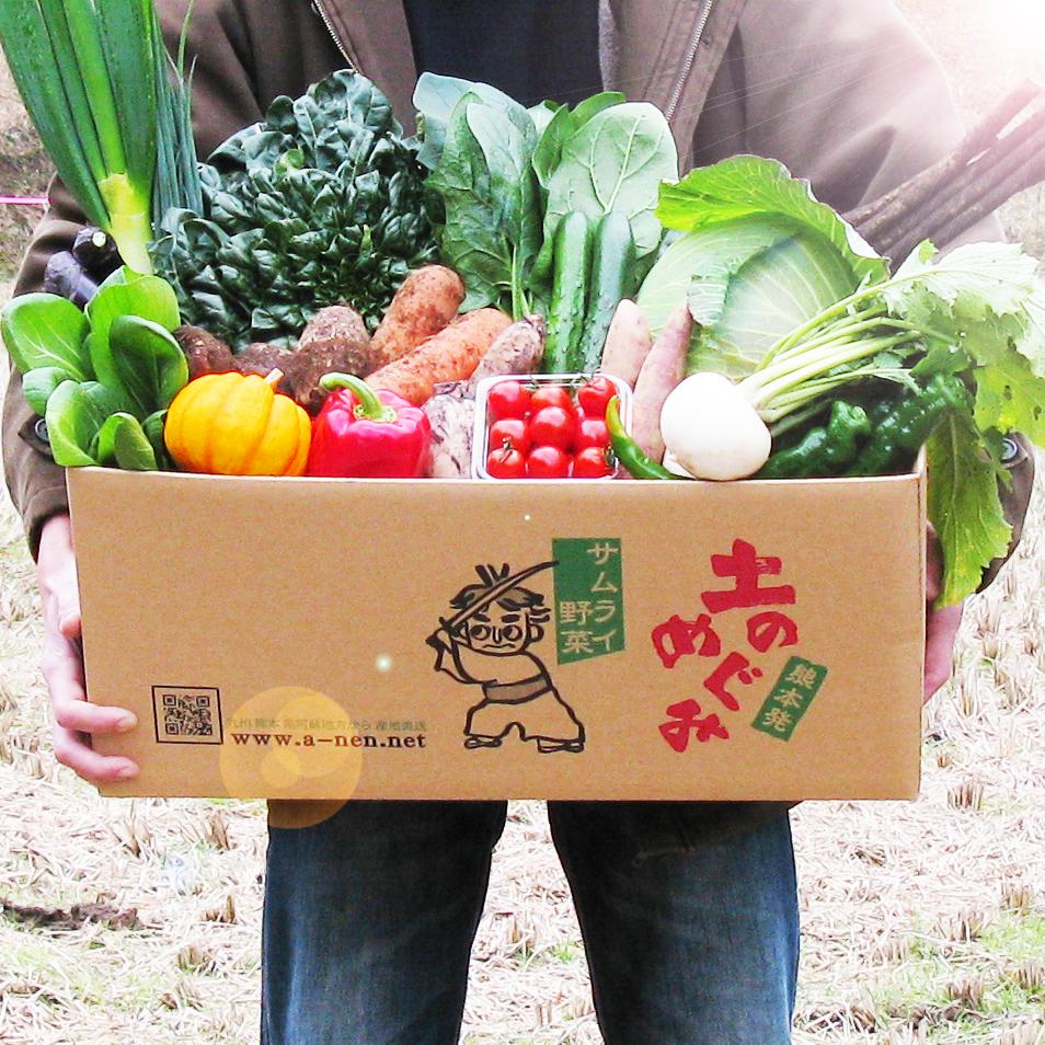 土のめぐみ 元気野菜セット《定期便》