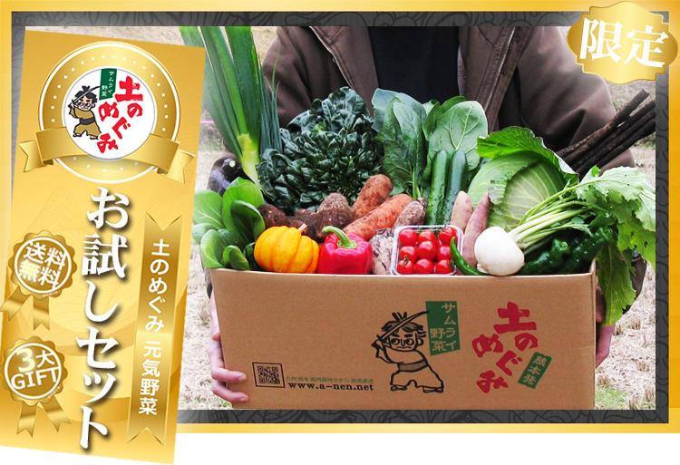 【限定】土のめぐみ元気野菜お試しセット