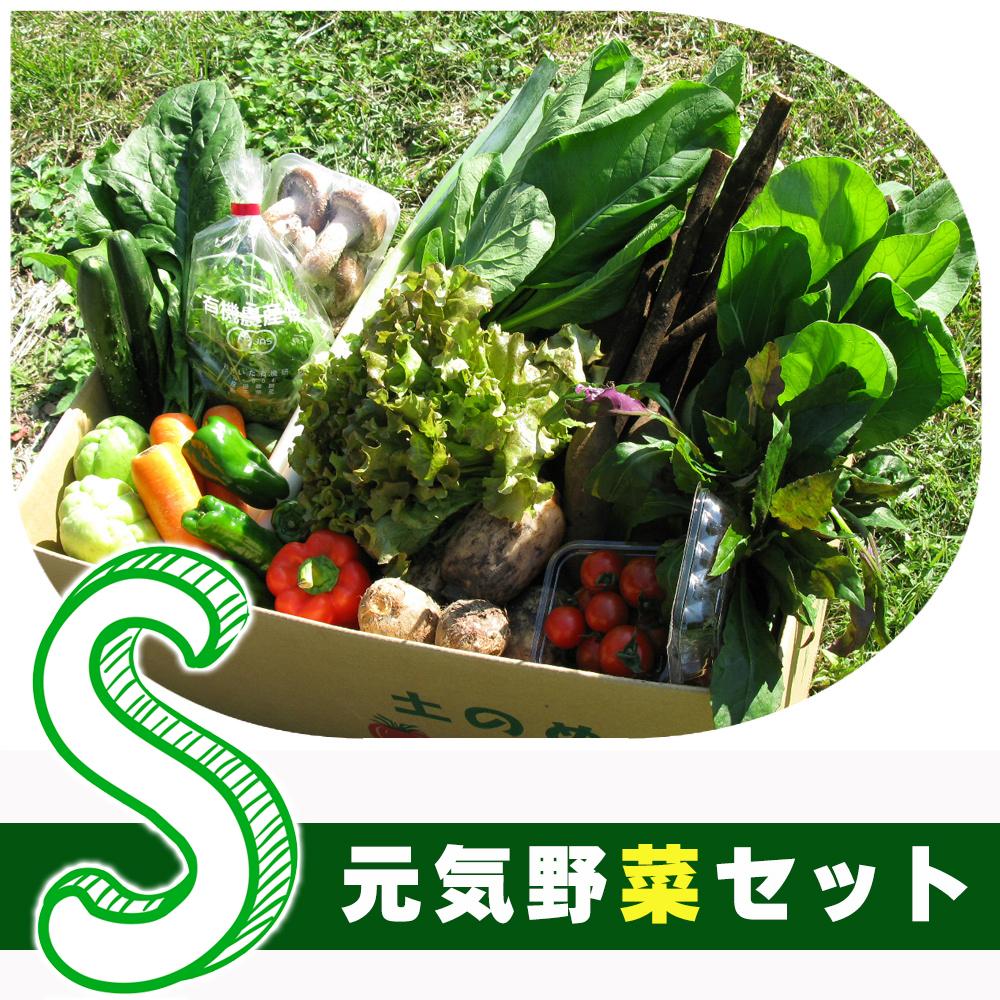 元気野菜 S セット