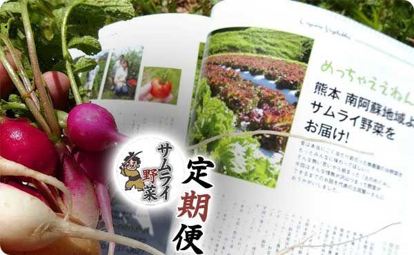 <span>元気野菜セット 定期お届け便</span>