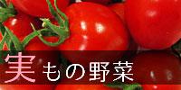 実もの野菜